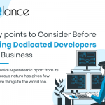 Key points to Consider Before hiring Dedicated Developers for Business